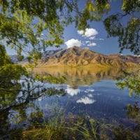 Weiden am Ufer, Lake Benmore, Otago, Südinsel, Neuseeland