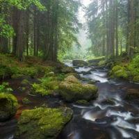 Waldviertel, Niederösterreich