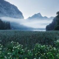 Leopoldsteiner See, Steiermark