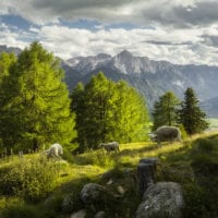 Österreich Fotos - Rainer Mirau