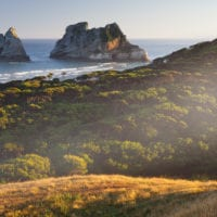 Archway Islands, Wharariki Beach, Tasman, Südinsel, Neuseeland