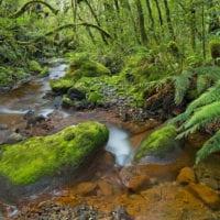 Neuseeland Fotos