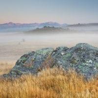 Sonnenaufgang auf einer Schafweide, Felsen, Otago, Südinsel, Neuseeland
