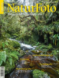 Cover-Naturfoto-Tecklenborg